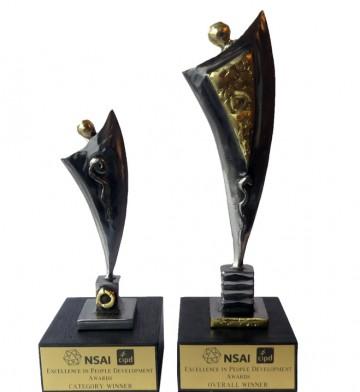 NSAI-Awards