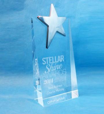 Stellar-Shine-Awards-a